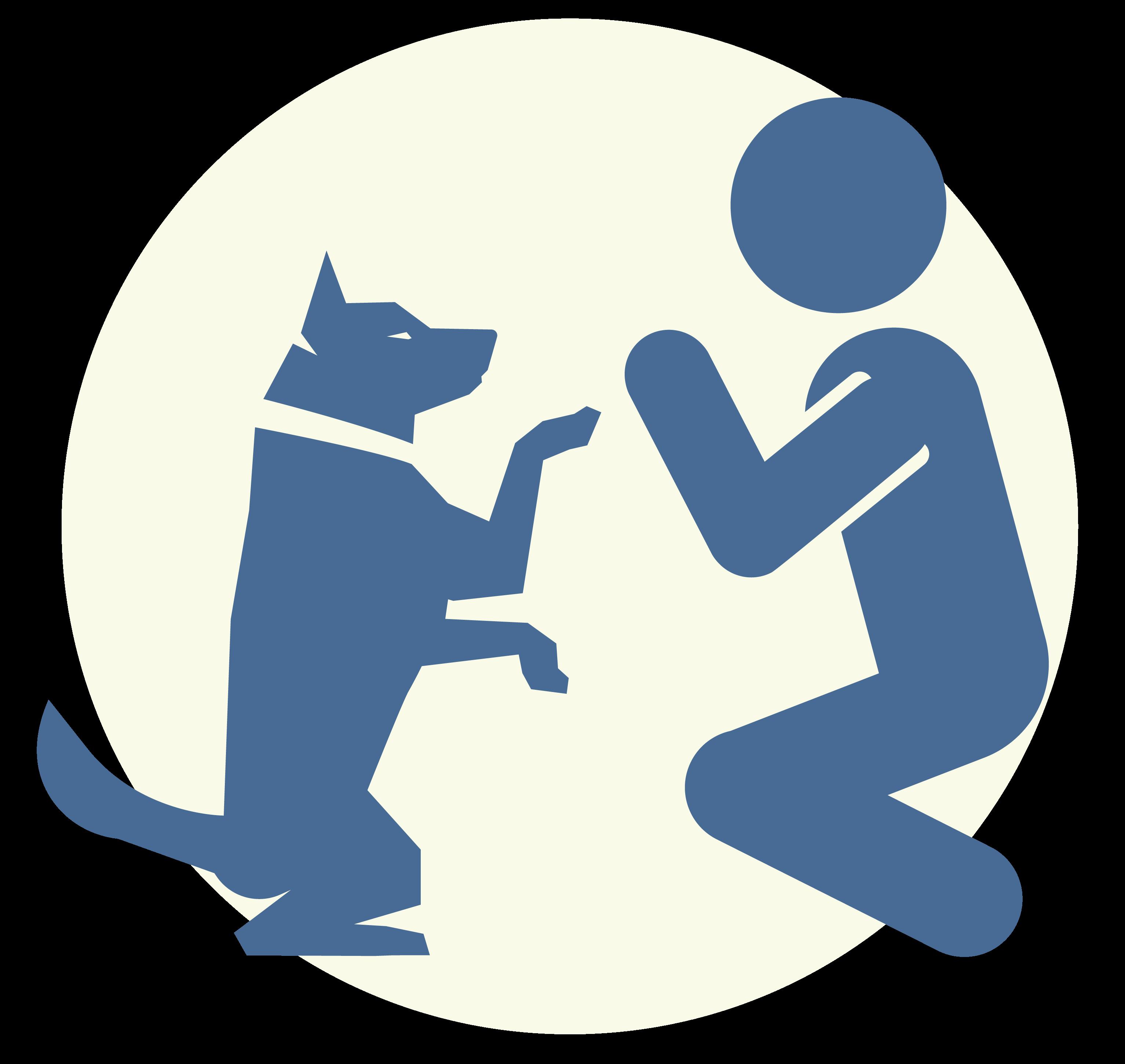 dog group training classes